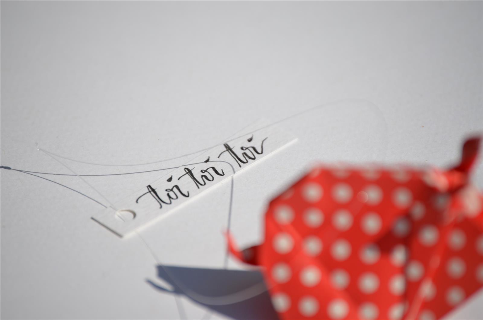 Glücksschwein + Schriftzug: rot mit weißen Punkten